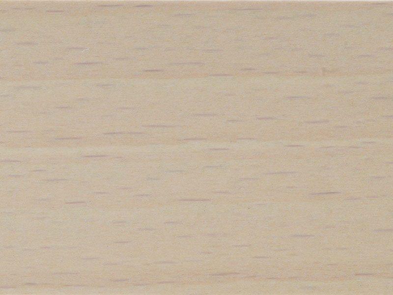 Морилка водная BG 20000